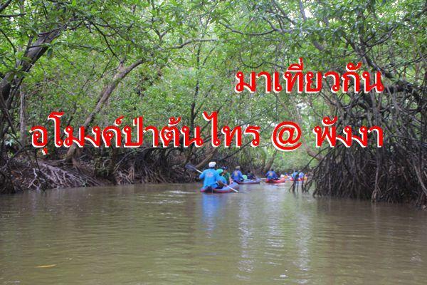 ชิล ชิล นั่งเรือแคนู ชมอุโมงค์ต้นไทร @ พังงา