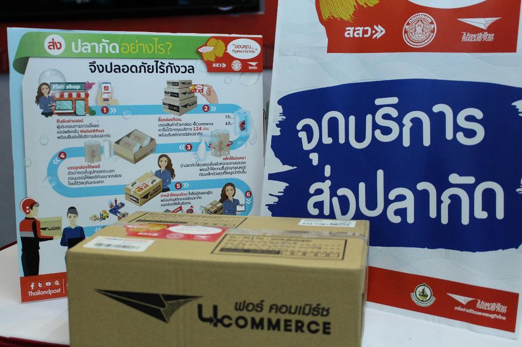กล่อง ฟอร์ คอมเมิร์ซ สำหรับส่งปลากัด พร้อมสติ๊กเกอร์พิเศษเพื่อระบุว่าเป็นปลากัด