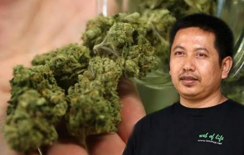 """ไบโอไทยห่วง """"สิทธิบัตรกัญชา"""" ทำออก กม.ยาเสพติดไม่ได้ หลังกรมทรัพย์สินฯ ปล่อยเกียร์ว่าง"""