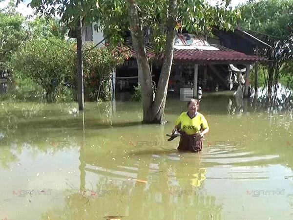 ท่วมแล้ว 3 อำเภอของตรัง ชาวบ้านที่ลุ่มริมแม่น้ำตรังเฝ้าระวังเตรียมรับมือเต็มที่