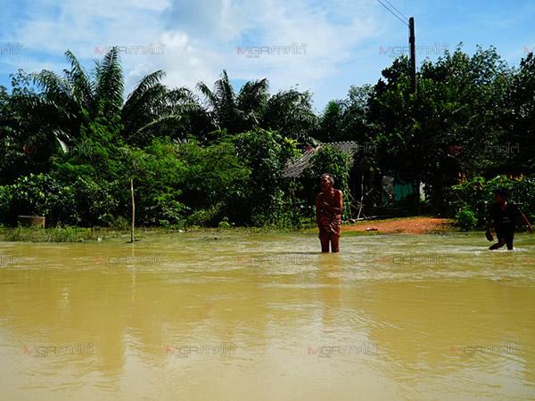 ชาวหารโพธิ์ลำบากต้องว่ายน้ำข้ามลำคลองซื้อสิ่งของ หลังน้ำหลากพัดสะพานหายไป