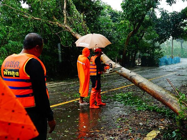 """ระลอก 2 ลมแรงพัดกระหน่ำ """"เกาะหมาก"""" ต้นไม้ล้มทับบ้านเรือน เส้นทางสัญจรเพิ่ม"""