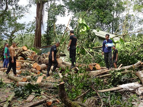ทหารนาวิกโยธิน กองทัพเรือ ลงช่วยชาวบ้านในบาเจาะต้นไม้ล้มทับบ้านหลายหลัง
