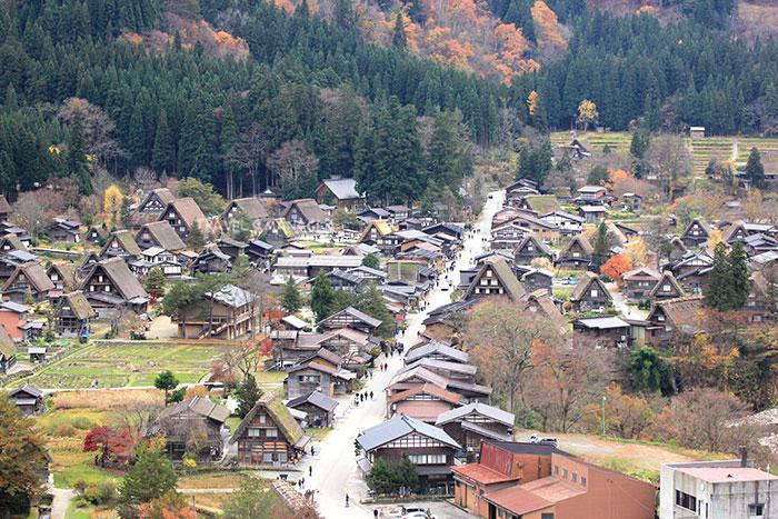 บรรยากาศหมู่บ้านชิราคาวาโกะ ในฤดูใบไม้ร่วง(มองจากจุดชวิวชิโรยามา)