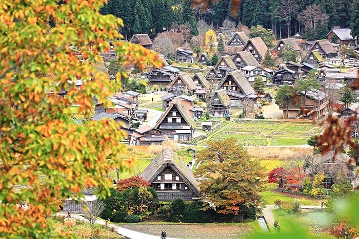 ชิราคาวาโกะ หมู่บ้านในเทพนิยายกับสถาปัตยกรรมแบบกัสโซซึคุริอันงดงามเป็นเอกลักษณ์