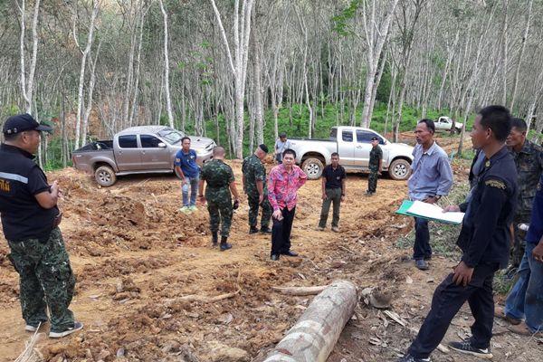 ตะลึง ! ป่าสงวนที่สุราษฎร์ฯ ถูกบุกรุก หลัง ตร.สกัด จับรถสิบล้อลอบขนไม้ได้