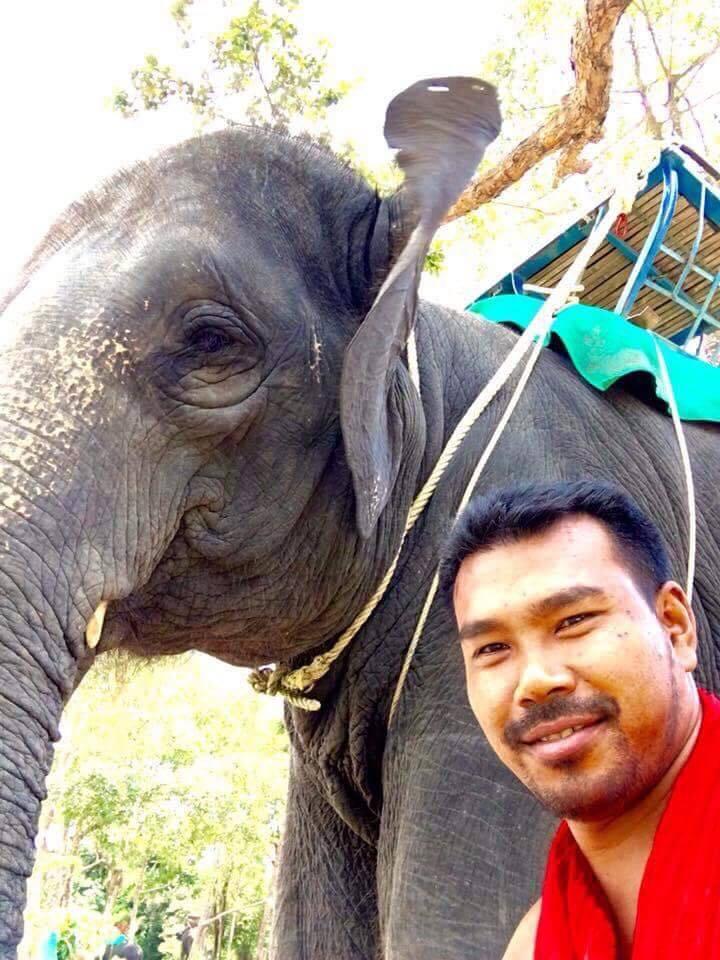 วิพากษ์ไม่หยุด!ชี้กระแสเลี้ยงช้างไม่ใช้ตะขอ-ไม่ล่ามโซ่ ควาญเสี่ยงซ้ำรอยเหตุสลดปางช้างดังเชียงใหม่