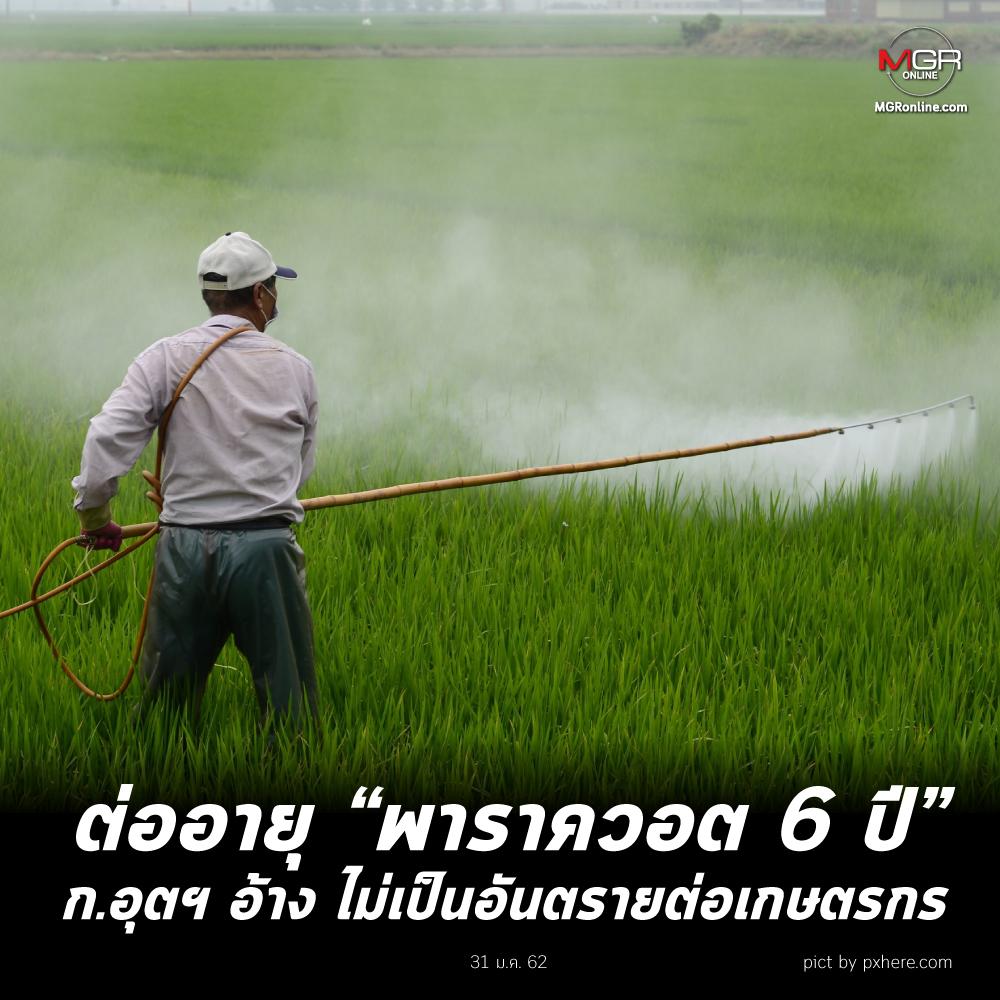 """ต่ออายุ """"พาราควอต 6 ปี"""" ก.อุตฯ อ้าง ไม่เป็นอันตรายต่อเกษตรกร"""