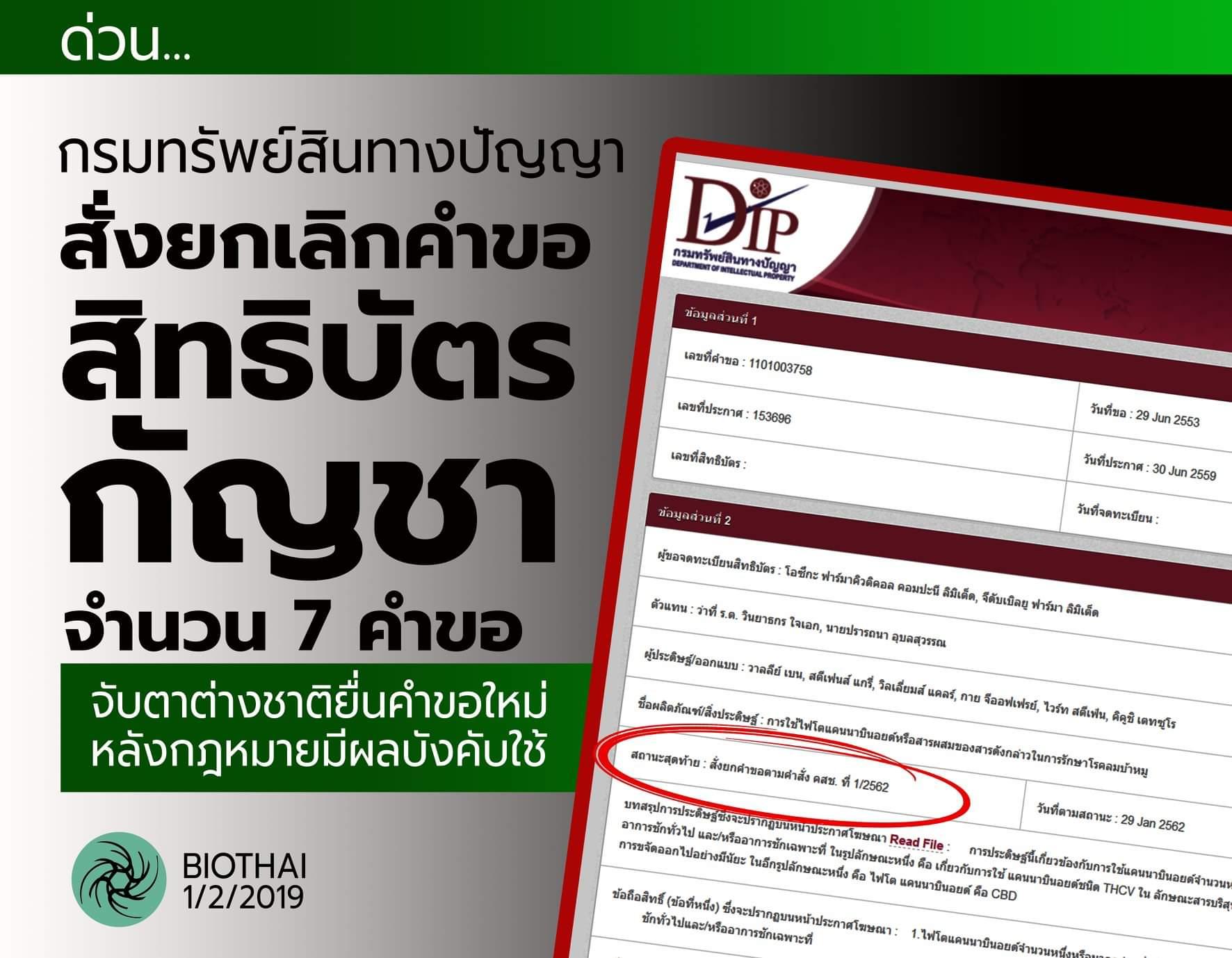 ไบโอไทย เผยกรมทรัพย์สินฯ ยกเลิกสิทธิบัตรกัญชาแล้ว 7 คำขอ จับตา 4 เรื่องสำคัญ