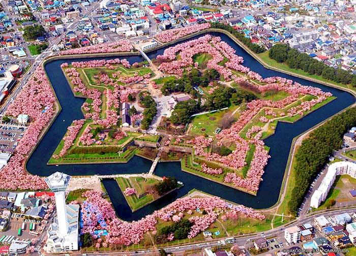 สวนสาธารณะโกะเรียวกะคุ (ภาพจาก JNTO)