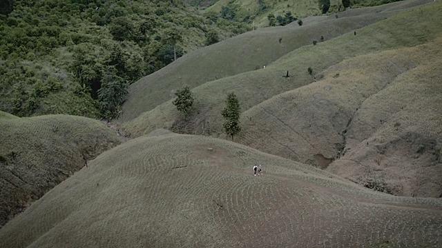"""""""สร้างคน-สร้างป่า-สร้างใจอนุรักษ์"""" จากเขาหัวโล้น..สู่ป่ายั่งยืน """"Nan Sandbox"""""""