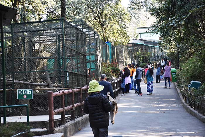 ภายในสวนสัตว์