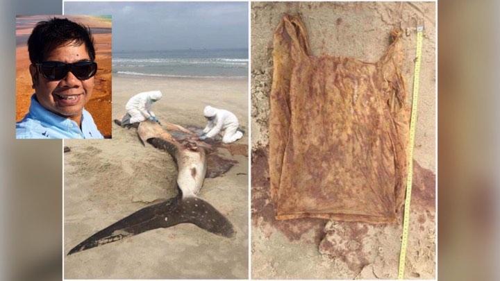 ดร.ธรณ์ วอนช่วนกันดูแลท้องทะเล หลังพบฉลามวาฬตายเพราะกลืนถุงพลาสติกลงท้อง
