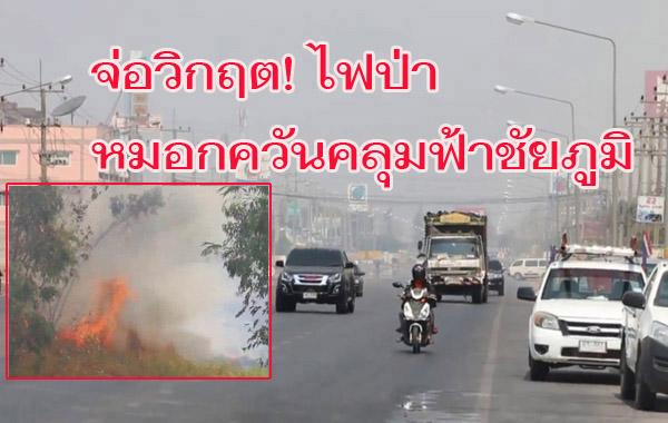 จ่อวิกฤต! ไฟป่าชัยภูมิเริ่มรุนแรง หนักสุดใน 7 อำเภอ หมอกควันหนาคลุมเมือง-ค่าฝุ่นจิ๋วพุ่ง
