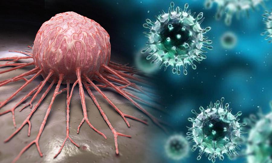 ไวรัสหัด รักษามะเร็ง จริงแค่ไหน?