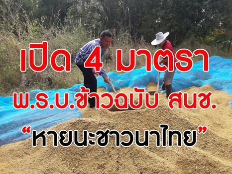 """เปิด4มาตรา พ.ร.บ.ข้าวฉบับ สนช.. """"หายนะชาวนาไทย"""""""