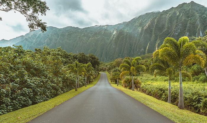 เกาะโออาฮู (ภาพ อโกด้า)