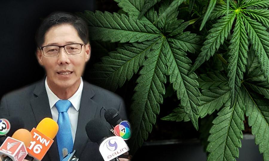 """เห็นชอบร่างนิรโทษครอบครอง """"กัญชา"""" เพิ่มใช้ประโยชน์ของกลางแทนทำลาย ผู้ป่วยแจ้งใช้ต้นใบดอกได้ จ่อประกาศ 16 ตำรับยาไทยเข้ากัญชา"""