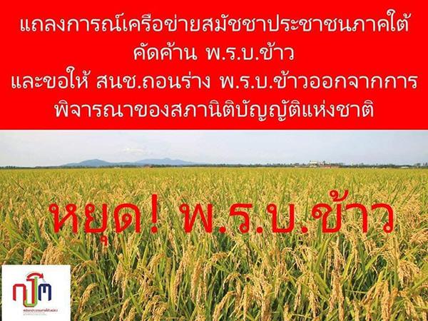 """67 องค์กรสมัชชาประชาชนใต้ จี้ สนช.ถอนร่าง """"พ.ร.บ.ข้าว"""" หวั่นทำลายความหลากหลายทางพันธุ์กรรมข้าว"""