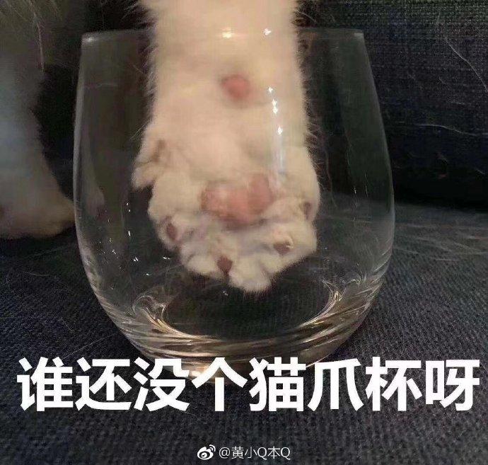 """""""ศึกชิงถ้วยตีนแมว"""" ดันราคาถ้วยกาแฟสตาร์บัคส์จีนปรี๊ดใบละร่วมหมื่นบาท!"""