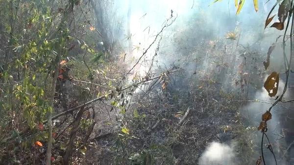 ไฟไหม้ป่าดอยพระบาท ลามยาวกว่า 3 กม. จนท.เดินเท้าดับยังเอาไม่อยู่-ค่าฝุ่นคลุมลำปางพุ่งไม่หยุด