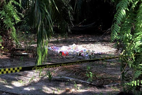 โหดเหี้ยม! แรงงานมอญเมาค้าง เกิดอาการหื่น ลากยายวัย 72 ปี ข่มขืนฆ่าทิ้งสวนปาล์มชุมพร