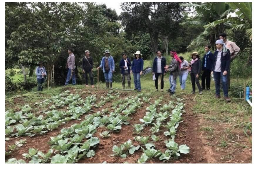 """เตรียมดัน """"กลุ่มเกษตรอินทรีย์นางั่ว"""" สู่หมู่บ้านเกษตรอินทรีย์แห่งเพชรบูรณ์"""