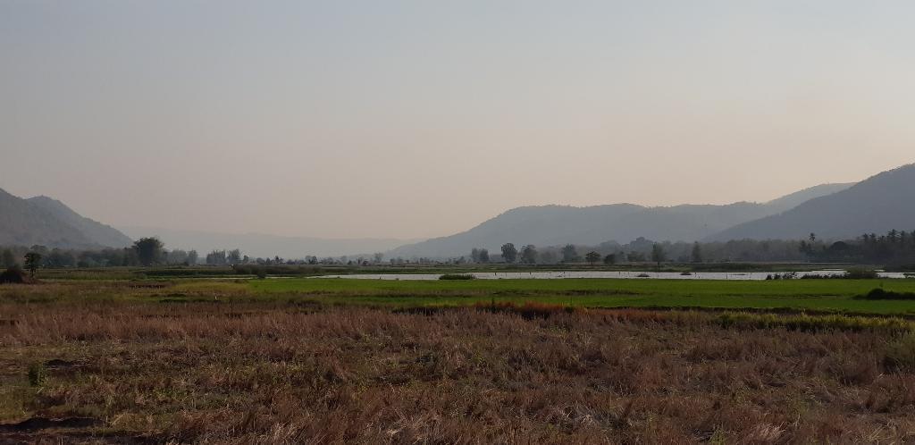 พื้นที่เกษตรบ้านนาหมูม่น