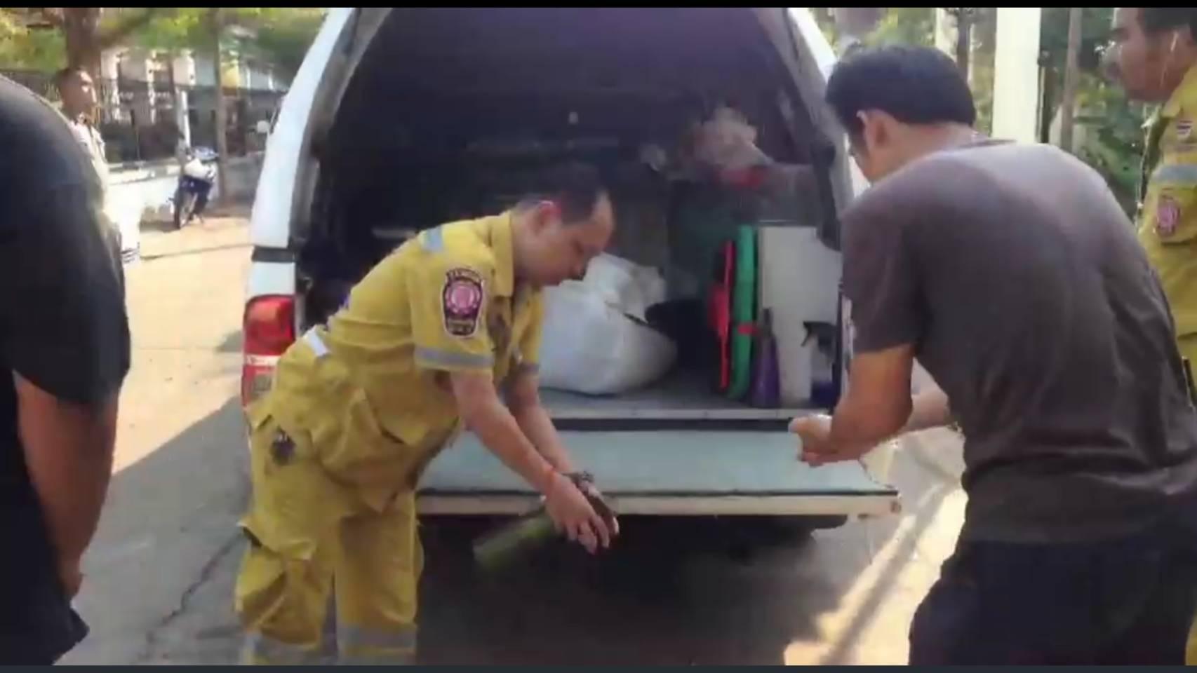 สลดยายวัย 75 อยู่บ้านคนเดียวถูกหมาพิตบลู 6 ตัวรุมกัดจนตาย