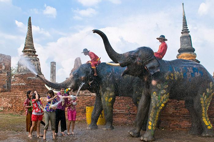 สงกรานต์กรุงเก่าเล่นน้ำกับช้าง ที่อยุธยา