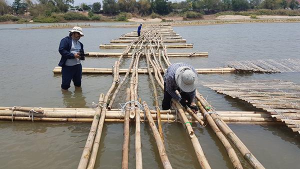 ชาวบ้านร่วมใจ สะพานไม้ไผ่ยาวกว่า100 เมตร แลนด์มาร์คช่วงหน้าแล้งเมืองชัยนาท