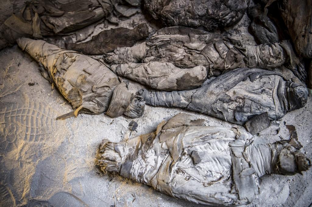 """อียิปต์พบ """"มัมมี่หนู"""" ในสุสานโบราณ 2,000 ปี"""