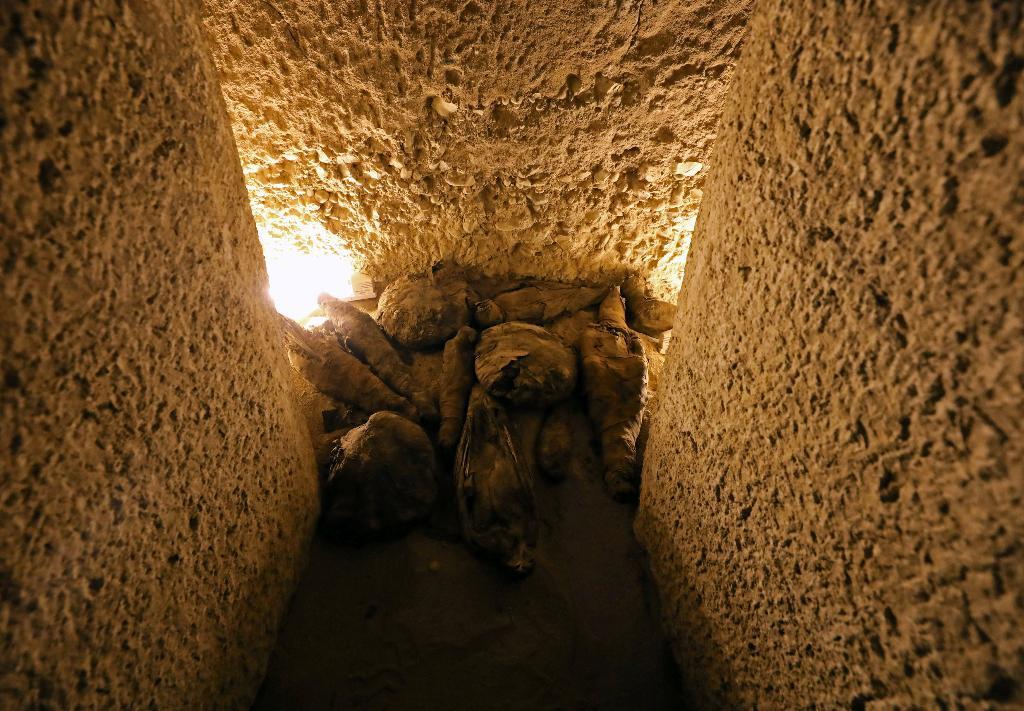 มัมมี่เหยี่ยวและนกอื่นๆ ที่จัดแสดงภายในแหล่งขุดสำรวจใหม่ ณ สุสานตูตู (Tomb of Tutu) เขตซูฮัก อียิปต์ (REUTERS/Mohamed Abd El Ghany)
