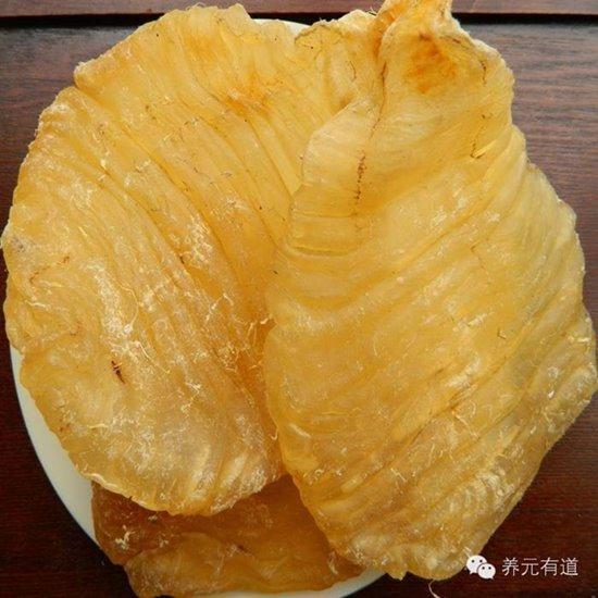 กระเพาะปลาตัวเมีย (สังเกตลายขวางลายคลื่น) ขอบคุณภาพจาก https://www.weibo.com/ttarticle/p/show?id=2309403963088649995186