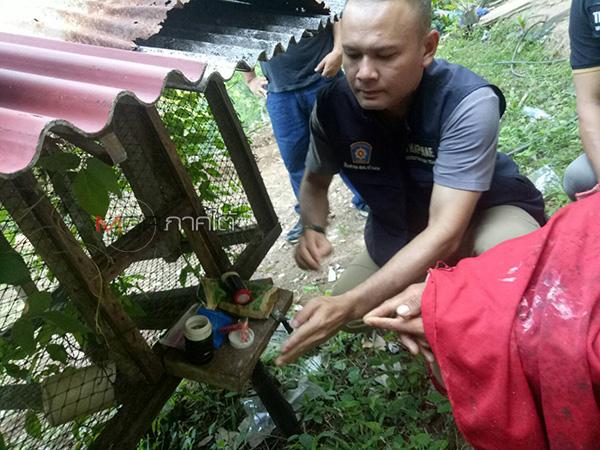 ไม่รอด! ตร.ท่าแพจับหนุ่มสตูลนำยาบ้าซุกกรงนก ใบกระท่อมแอบในสวนกล้วย