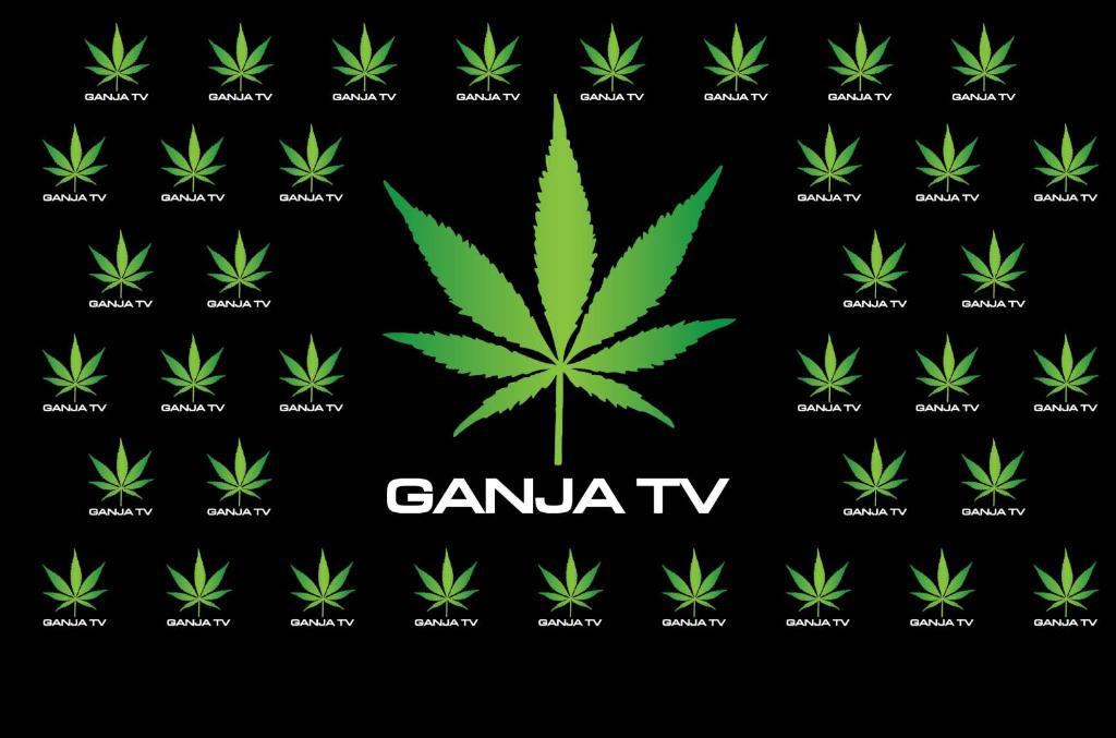 """สถานีโทรทัศน์  Gunja TV เปิดตัวในงาน """"พันธุ์บุรีรัมย์""""ถ่ายทอดสด อภิปรายและเสวนาทางวิทยาการทางการแพทย์19-21 เมย. นี้พร้อมแจกรางวัลสำหรับผู้ร่วมรับชม"""
