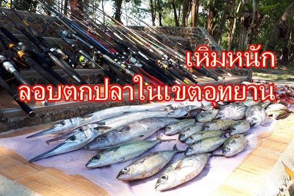 เรือนำเที่ยวเหิมพาต่างชาติลอบตกปลาในเขตอุทยานสุดท้ายไม่รอด