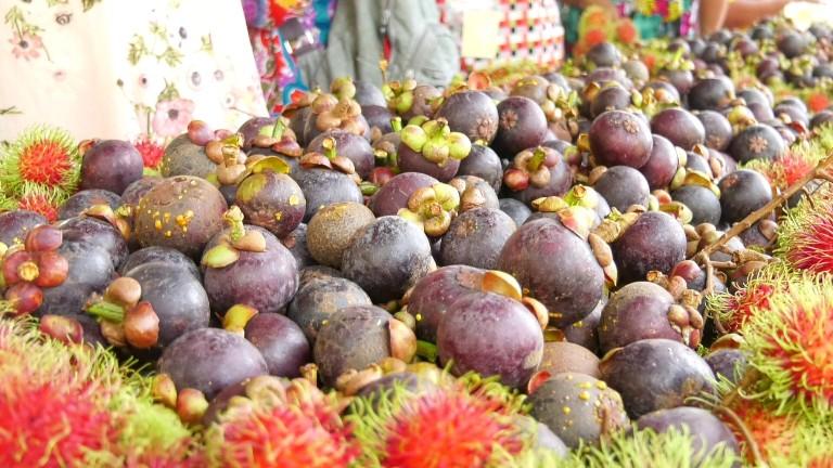 ตราด เปิดงาน SMART FARMER FAIR 2019 เอาใจคนรักผลไม้ 20-21 เม.ย.นี้