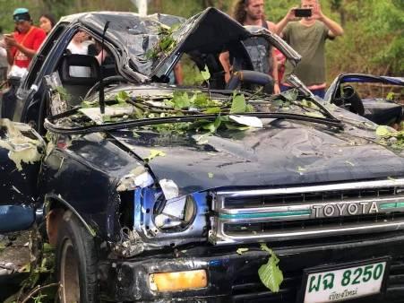ระทึก!พายุฝนลมแรงต้นไม้ล้มทับรถบนถนนแม่มาลัย-ปายพังยับ คนเจ็บติดในซากรถ