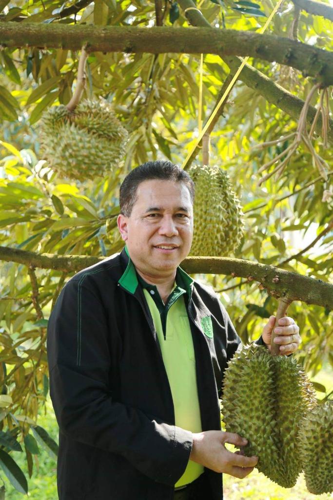 กรมส่งเสริมการเกษตร มุ่งพัฒนาระบบบริหารจัดการผลไม้ เน้นวางแผนบริหารจัดการผลไม้แบบเบ็ดเสร็จเพื่อควบคุมคุณภาพ