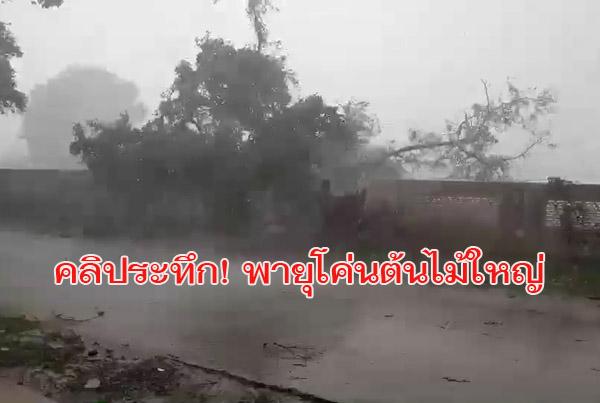 ดูกันชัดๆคลิประทึก! พายุโค่นต้นไม้ใหญ่ทับรั้วรพ.สต.บุรีรัมย์พัง หอบหลังคาบ้านเสียหายหลายหลัง