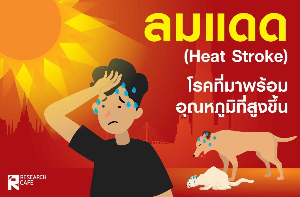 ลมแดด (Heat Stroke) โรคที่มากับอุณหภูมิที่สูงขึ้น