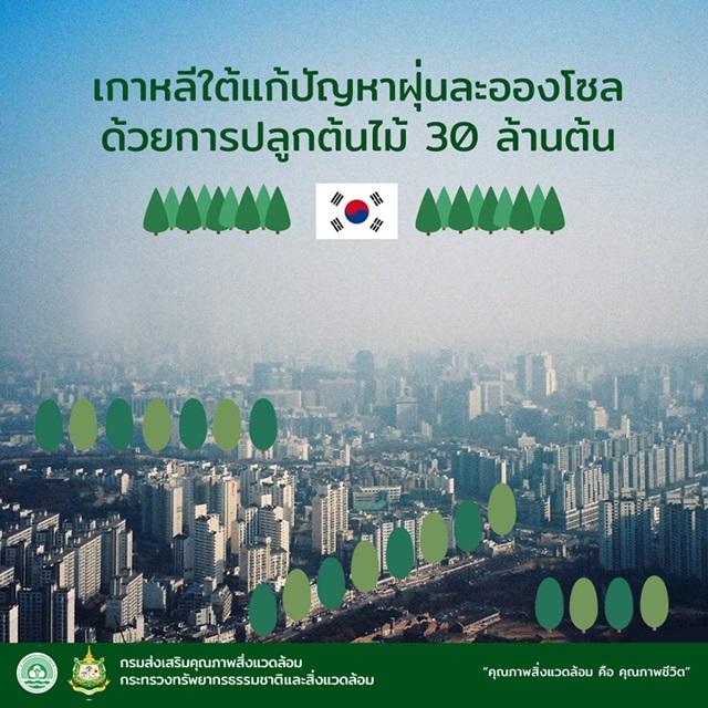 กรุงโซล เกาหลีใต้แก้ปัญหาฝุ่นละออง ด้วยการปลูกต้นไม้ 30 ล้านต้น ตอกย้ำอะไรเมืองไทย!!
