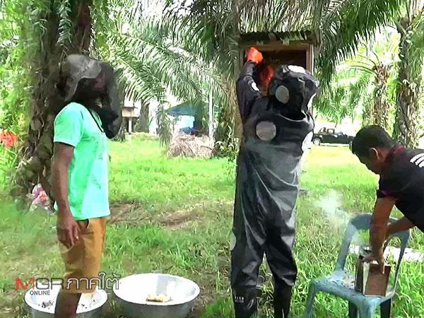 """กลุ่มเลี้ยงผึ้งโพรง """"อ.รัษฎา"""" โครงการ 9101 สำนึกในพระมหากรุณาธิคุณ"""