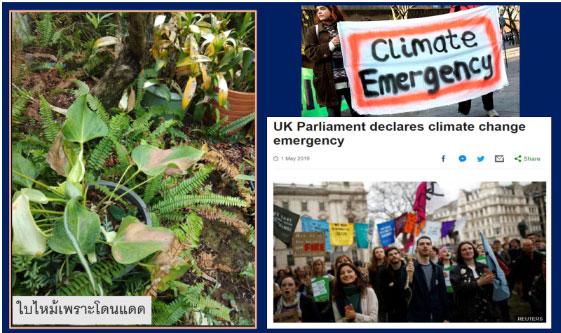 """เมื่อรัฐสภาสหราชอาณาจักรประกาศ """"ภาวะฉุกเฉินด้านการเปลี่ยนแปลงภูมิอากาศ"""" / ประสาท มีแต้ม"""