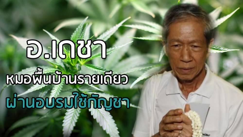 """ล็อตแรก """"หมอ-เภสัช-แผนไทย"""" จ่ายกัญชาได้ 299 คน """"อ.เดชา"""" ผ่านอบรมมีสิทธิใช้ด้วย"""