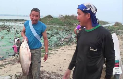 ปลากว๊านพะเยาที่ชาวบ้านจับได้อย่างง่ายดายในช่วงที่น้ำในกว๊านฯ แห้งลงอย่างหนัก
