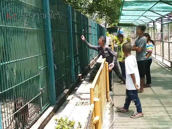 สวนสัตว์เปิดท่าลาดแจงเหตุกรงเลี้ยงลิงไม่สะอาด ยันทำความสะอาดทุกเช้ามืด