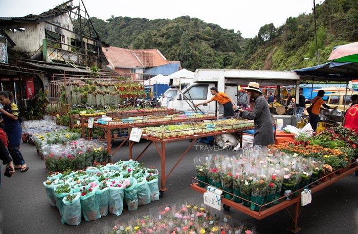 ดอกไม้นานาชนิดที่วางขายในตลาด