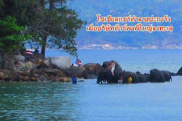 โซเชียลร้อง บริษัททัวร์ พาพี่ใหญ่ ลงเล่นน้ำทะเล ที่ภูเก็ต